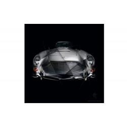 Tableau Aston Martin DB5 I