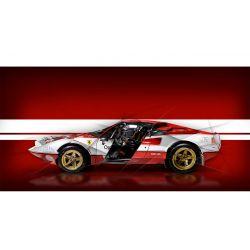 Art photography Ferrari 308 Gtb Rally
