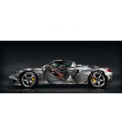 Tableau Porsche Carrera GT
