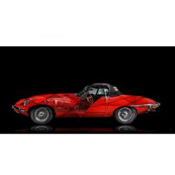 Art Photography Jaguar Type E II